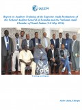 Report on Auditors Training of the Supreme Audit Institutions of the Federal Auditor General of Somalia and the National Audit  Chamber of South Sudan (2-8 May 2016)