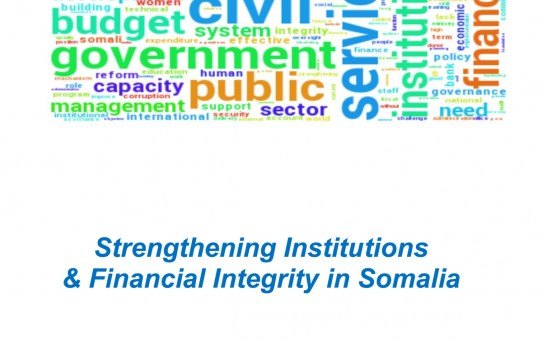 Strengthening Institution