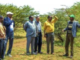 HESPI – IPADS International Conference Delegation  visit to Jigjiga University Campus and to a nursery and revegetation project at Kebribeyah town
